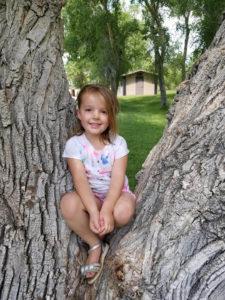 Ayva in a tree.